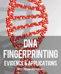 DNA Fingerprinting – Evidence and Applications