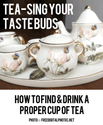 Tea-sing Your Taste Buds: How to Find & Drink a Proper Cup of Tea